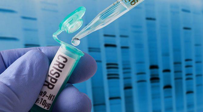 CRISPR研究
