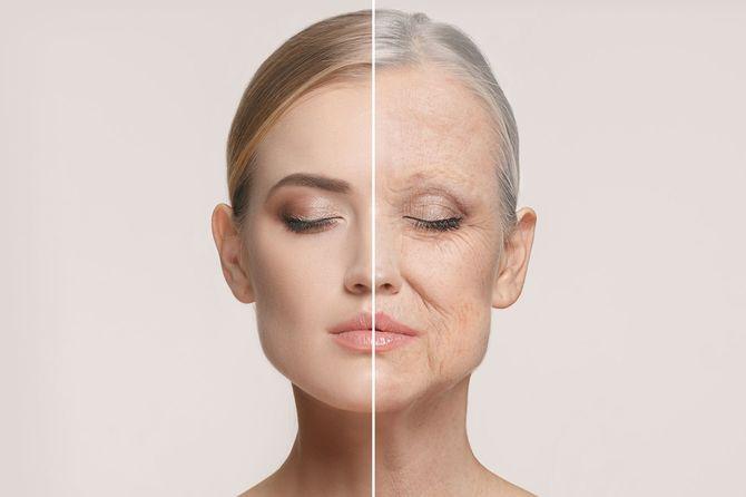 顔の老化のイメージ