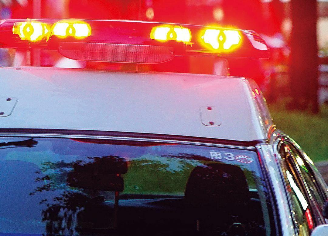 地方公務員に日大生がダントツで多い理由  警察官や高校教員も日大が1位