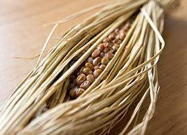 寒くなると腹が減る!食欲の秋を乗り切る「納豆」の味わい方