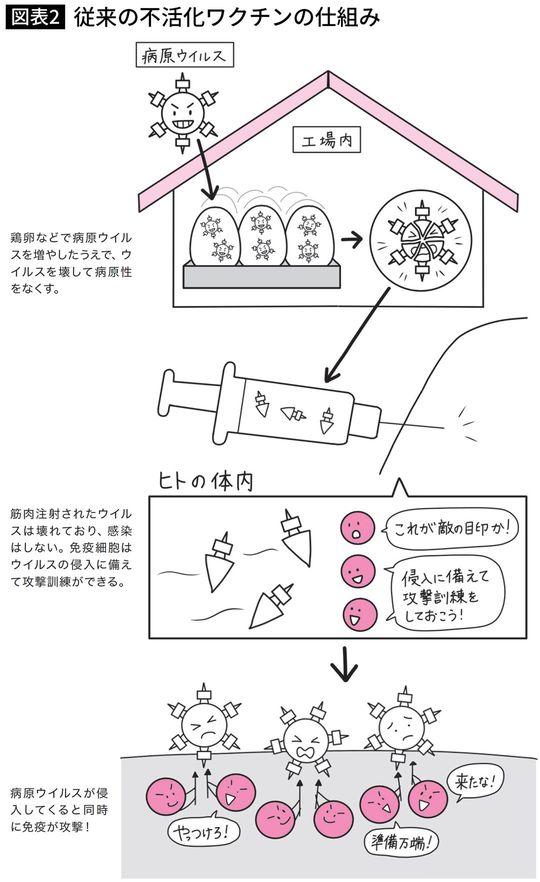 従来の不活化ワクチンの仕組み
