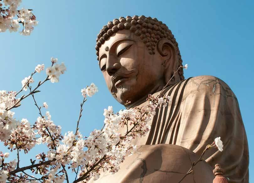 """「天皇の信仰」は神道なのか、仏教なのか 天皇の被災地訪問は""""菩薩行""""である"""