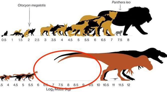 中型の肉食恐竜が存在しなかった理由が明らかに