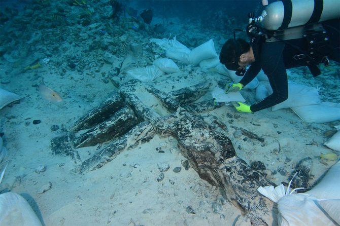 バハマでの発掘調査の様子
