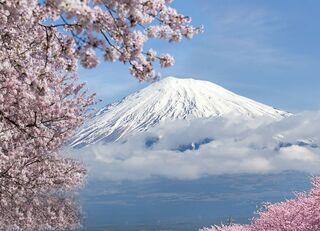 社長が「日本一」を連呼する企業は危ない