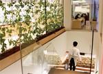 オフィス内の植物の管理は各部署に任されており、新人から役員まで、当番が交代で世話をする。