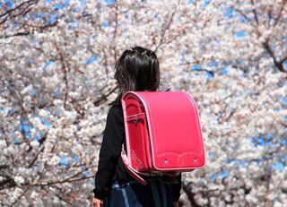 日本の学校で小1プロブレムが起こるワケ