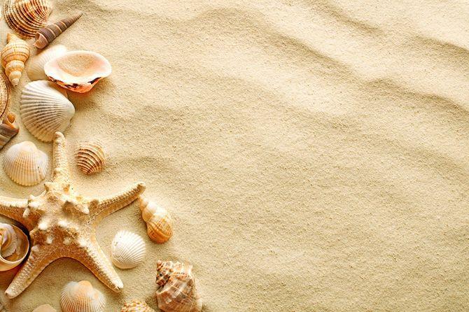 シーシェルズとヒトデに砂