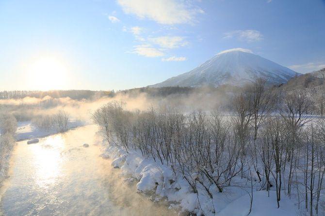ニセコの羊蹄山と霜で輝く木
