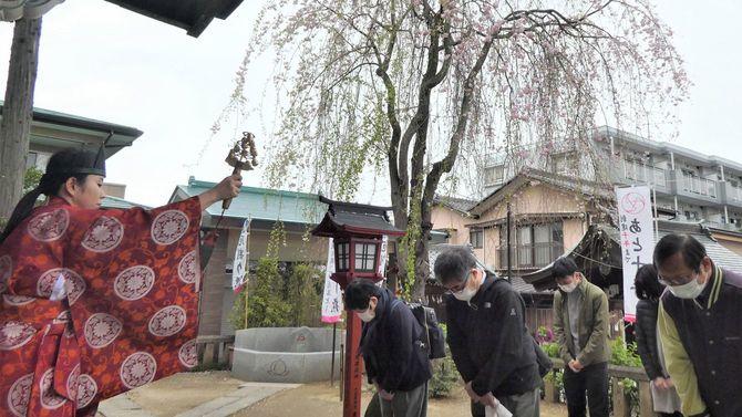 埼玉県川越市の川越八幡宮で2020年4月5日、新型コロナウイルス鎮静祈願祭が行われた。市内の観光名所では最も遅咲きのしだれ桜が咲く中、猛威を振るうウイルスの早期終息と住民らの健康を願った