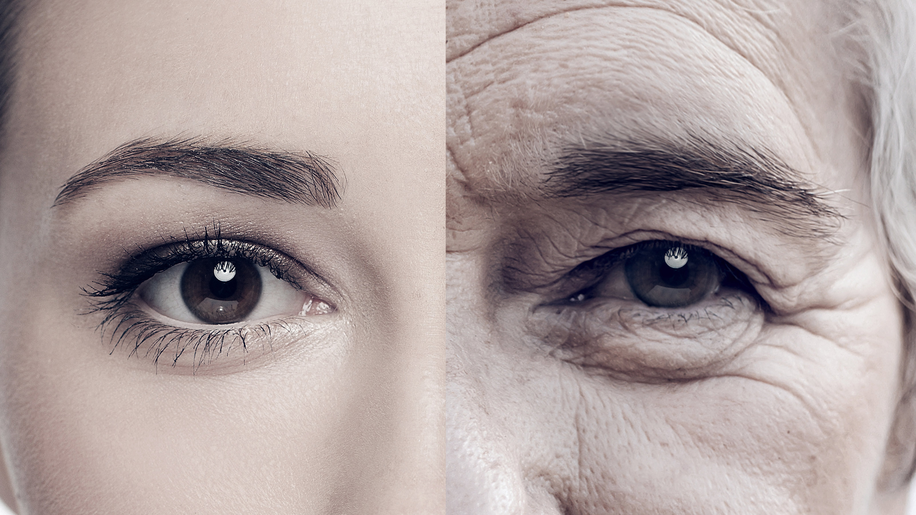 40代で一気に「顔の老化」が進む人が毎朝食べているもの 血管の専門家が ...