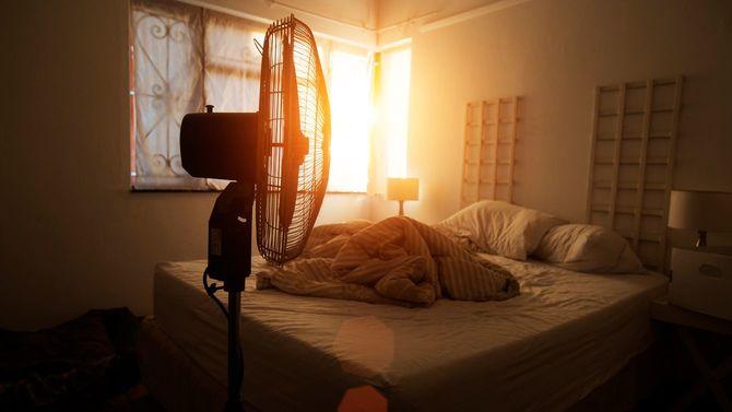 整えられていないベッドの手前に扇風機