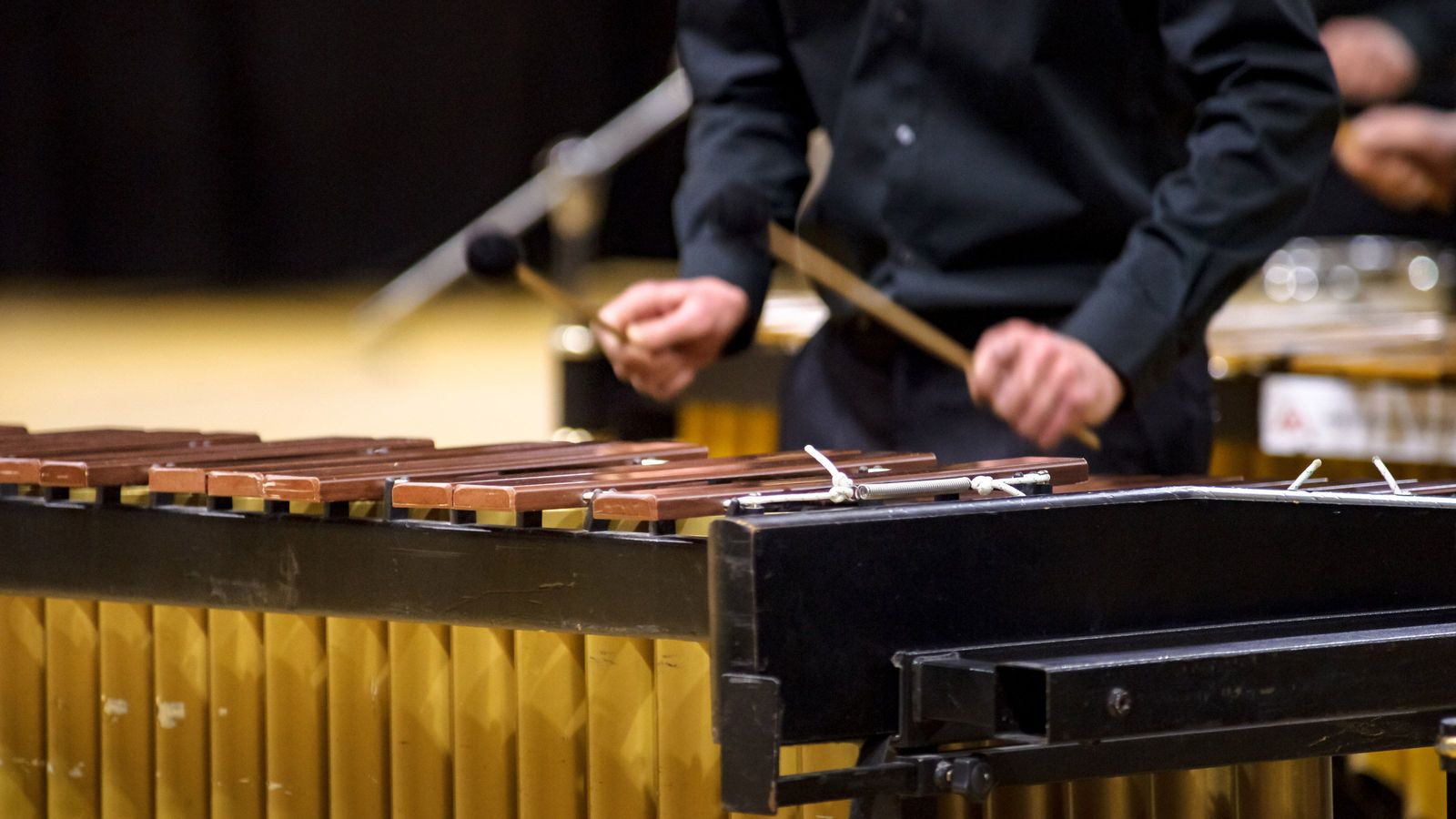なぜ「マリンバ」のソロ演奏でも客が集まるのか 地味な打楽器を「花形」に変える秘策
