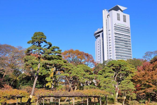 文京シビックセンターが見える景色