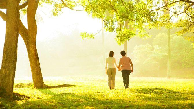 高齢の母親と手をつなぎ、公園で散歩する娘