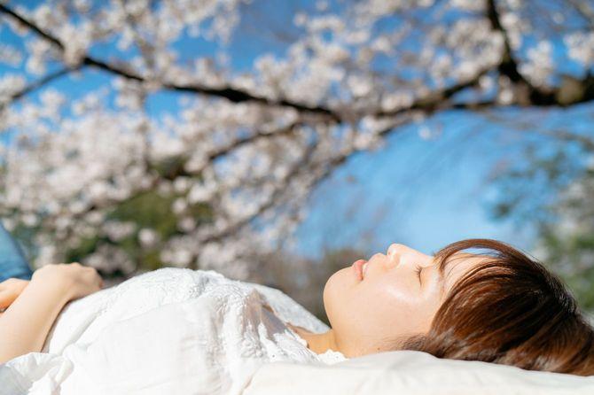 桜の木の下で休む若い女性