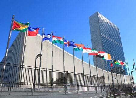 """任期付きが普通""""の国連職員は異常なのか 働き方を自分自身でデザイン ..."""