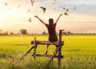「産まない人生」を選んだ人の葛藤と幸福