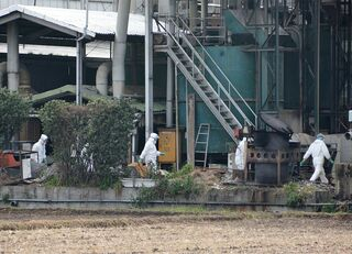 豚コレラを日本に持ち込む中国人のモラル