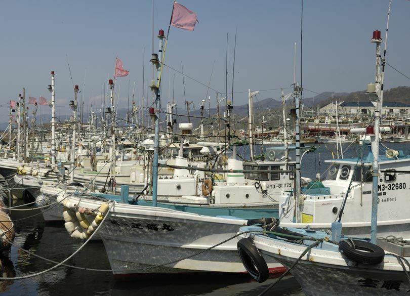 日本の漁業が中国の乱獲に相乗りする事情 魚を獲りつくす「補助金」の大罪