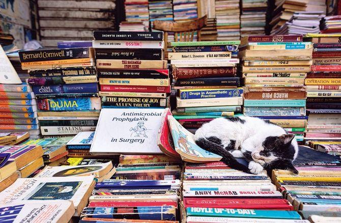 一番の楽しみは、布団の上に仰向けに寝転んで本を読むこと