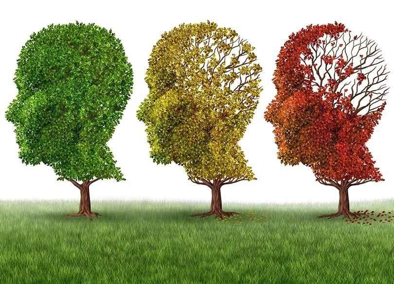 放置するとヤバい認知症前段階の症状11 予防は「減塩」と「有酸素運動」