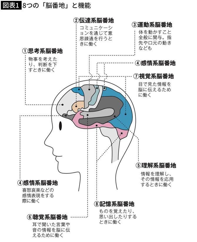 出典=加藤俊徳『45歳から頭が良くなる脳の強化書』(プレジデント社)