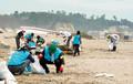 上手な運動設計によって、善意は結果に結びつく(宮城県の菖蒲田海水浴場の清掃ボランティア活動)。(PANA=写真)