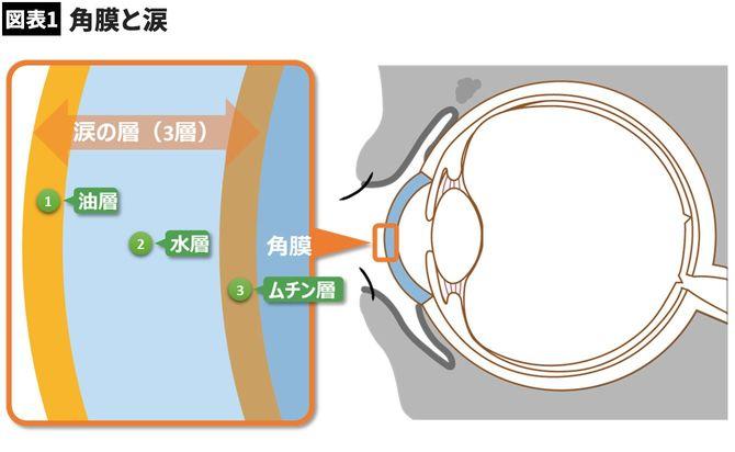 【図表】角膜と涙