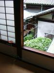 「水都大阪2009」水都アート回廊で、適塾に展示されている今村源の作品。現代アート作品を巡りながら、歴史にも触れる。適塾では、たった1冊の辞書でオランダ語をたくさんの若者が独学した。