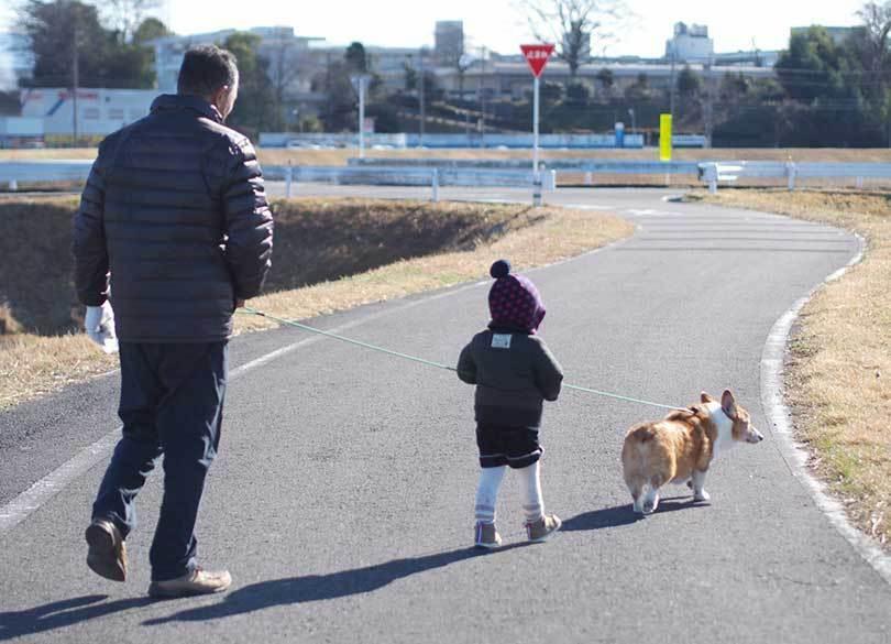 親も子も嬉しい4年間限定の「非課税」贈与