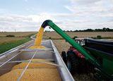 「強い農業」の「強さ」の基準とは
