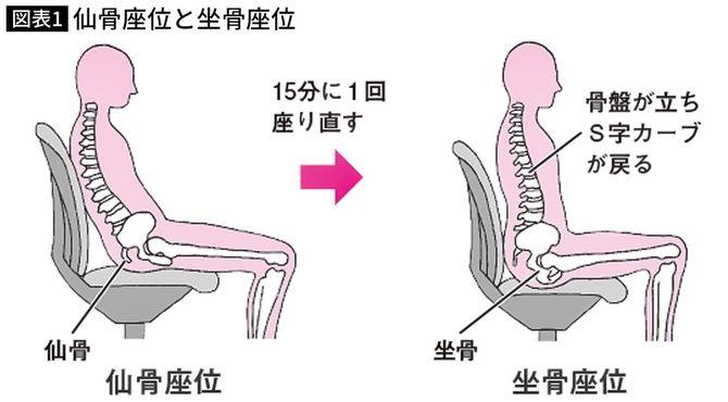 仙骨座位と坐骨座位